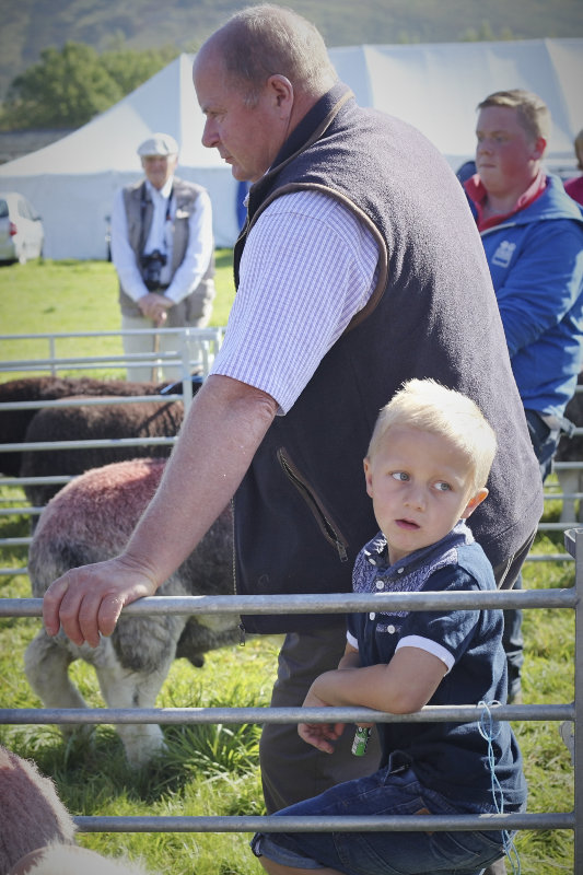 2014 Loweswater Show  first batch 158