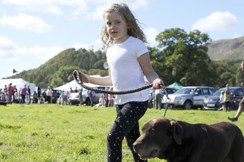 2014 Loweswater Show  first batch 163