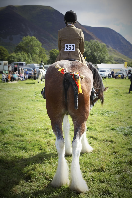 2014 Loweswater Show  first batch 174