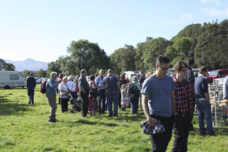 2014 Loweswater Show  first batch 291