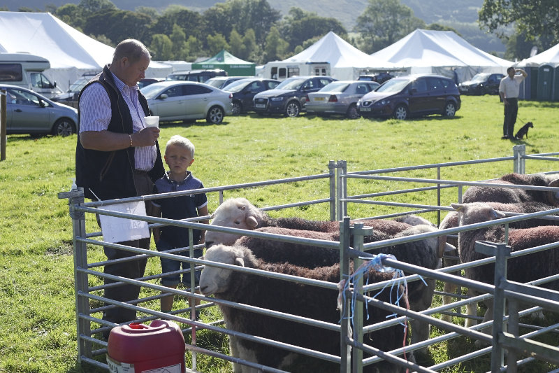 2014 Loweswater Show  first batch 294